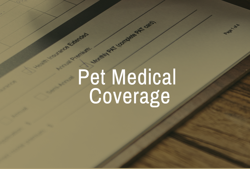 Pet Medical Coverage